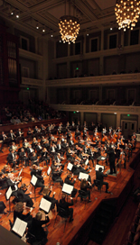 Symphony155x272.png